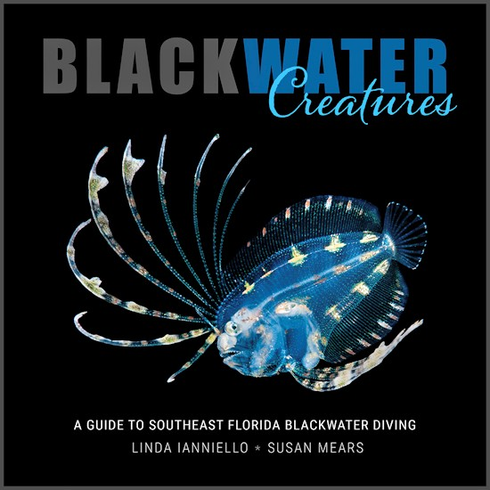 Black Water Creatures