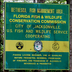 Bethesda Fish Management Area