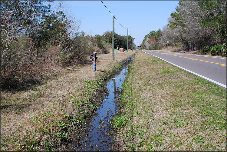 Drainage ditch looking north along Imeson Road