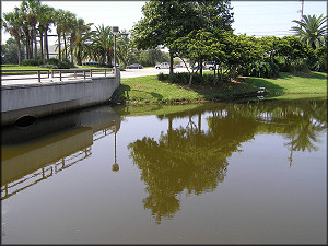 Lake At Cypress Plaza - Looking Towards Phillips Highway