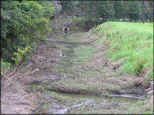"Drainage Ditch Looking ""downstream"""