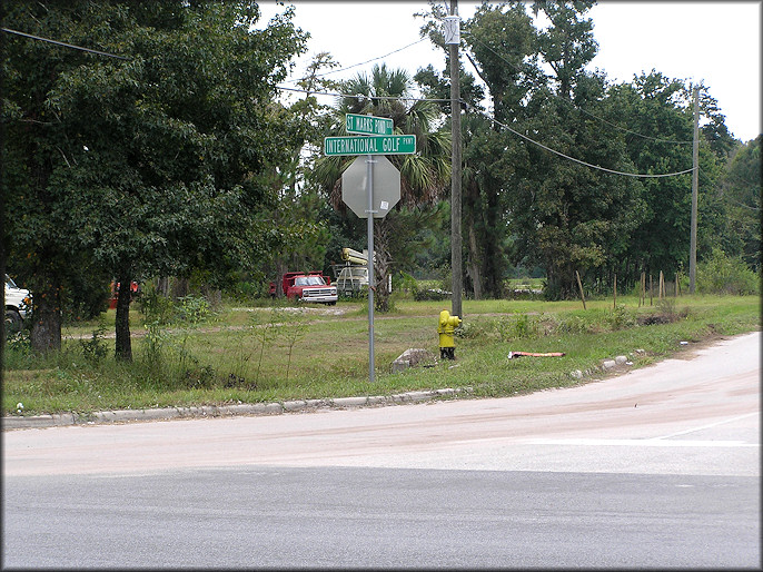 Intersection of International Golf Parkway and St. Marks Pond Boulevard where the Daedalochila were found
