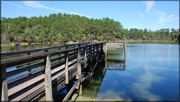 Partial view of the lake and fishing pier where the egg clutches were found