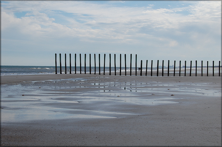 Intertidal Poles At Mayport Naval Station (Atlantic Ocean)