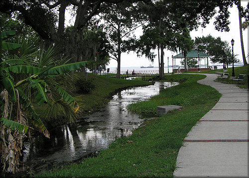 View of the spring run looking towards the St. Johns River